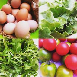 season organig ingredients